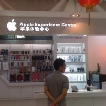 chineseexporience